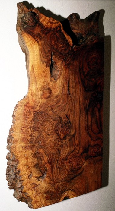 Walnut Burl Cabinet by Michael Elkan